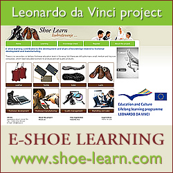 E-Shoe Learning